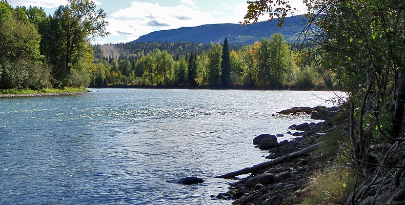 another part of the Bulkley River