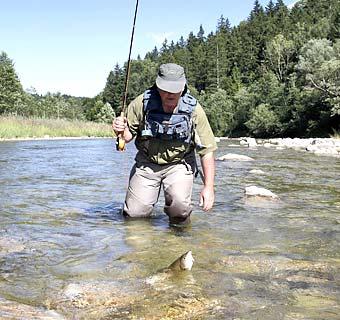 Fliegenfischen ist nur ein Bereich bein Fischen