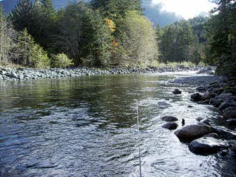 nice Gold river run for Steelhead fly fishing