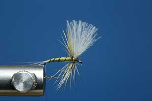 CDC BWO, learning fly tying, dry flies twelve