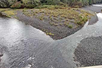 Salmon und White River